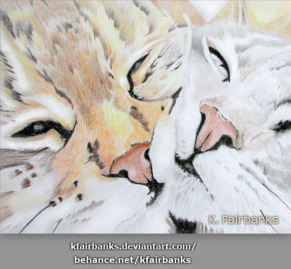 Two Cats - a pencil drawing by K. Fairbanks